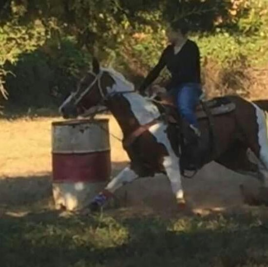 Haley Arnold, Barrel Racing